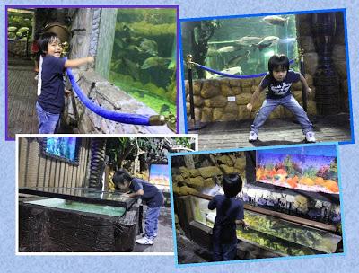 """Exploring the New Splashing Attraction: Las Farolas """"The Fish World"""""""
