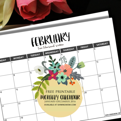 2016 Monthly Calendars {Minimalist Design!}