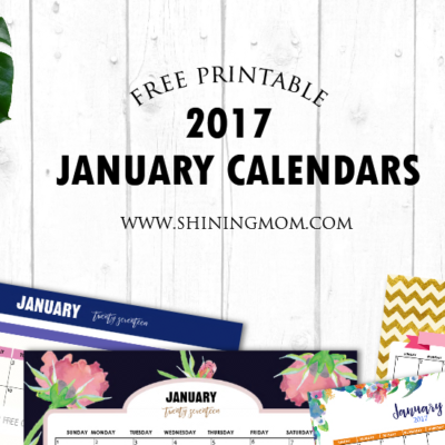 Free Printable January 2017 Calendar Set