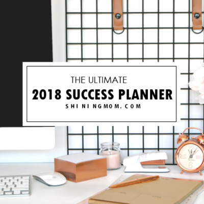 2018 Success Designer Planner: You Can Achieve Your Dreams!