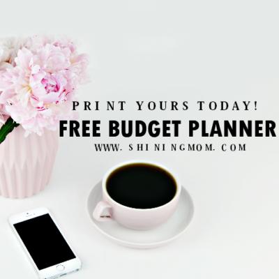 Budget Template Binder: 25+ Free Financial Worksheets