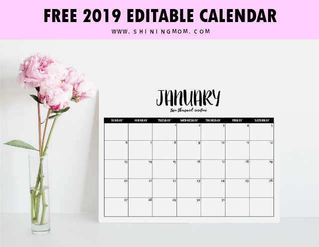 Template For Calendar 2019 FREE Fully Editable 2019 Calendar Template in Word