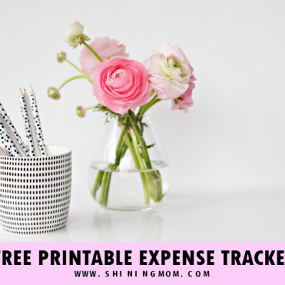 FREE Expense Tracker Templates: Log Your Spending!