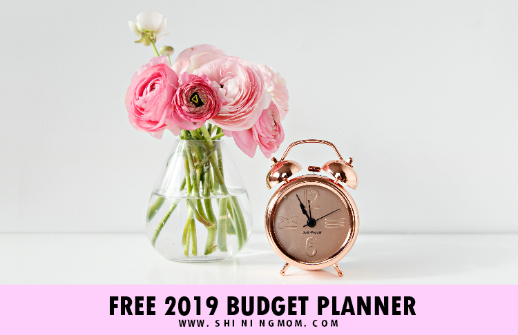 FREE Printable Budget Planner 2019: 30+ Budget Templates!