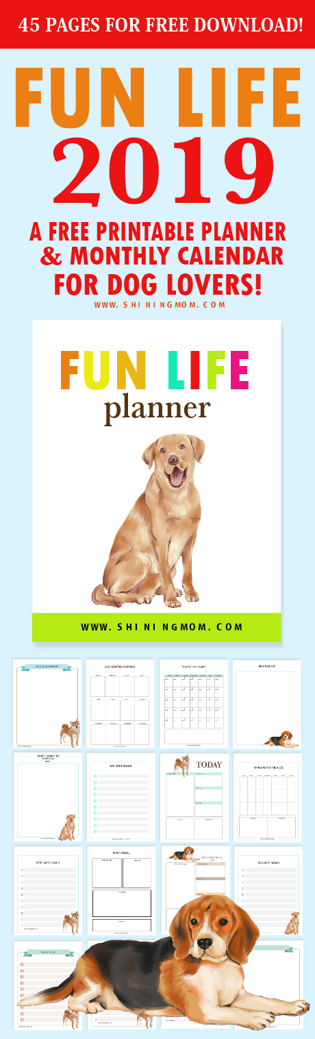 2019 Calendar and Life Planner Free Printables: 45 Pages!
