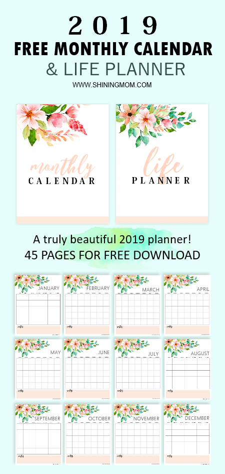 2019 planner and calendar