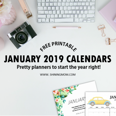 Free Printable January 2019 Calendar: 12 Awesome Designs!