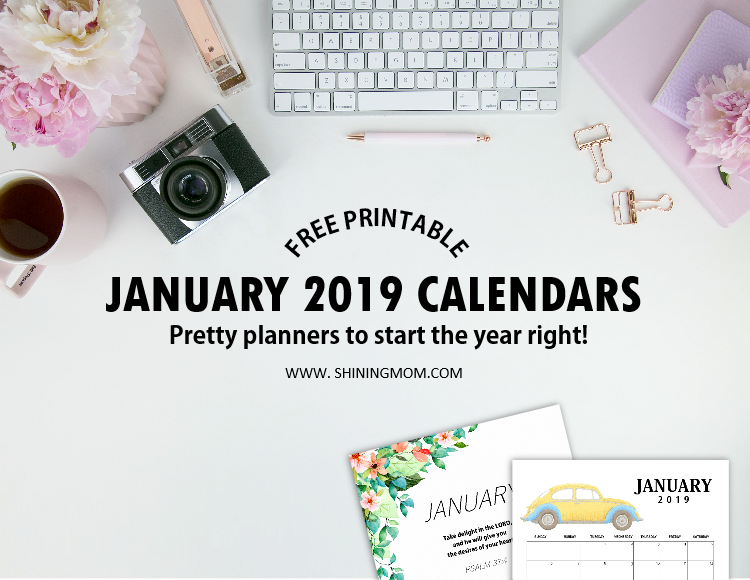 Free Printable January 2019 Calendar 12 Awesome Designs