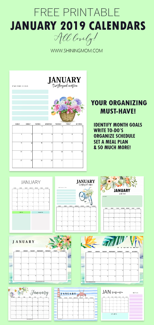 15 FREE January 2019 Printable Calendar Planners: Fresh ...