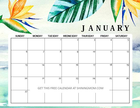 15 FREE January 2019 Printable Calendar Planners: Fresh ...
