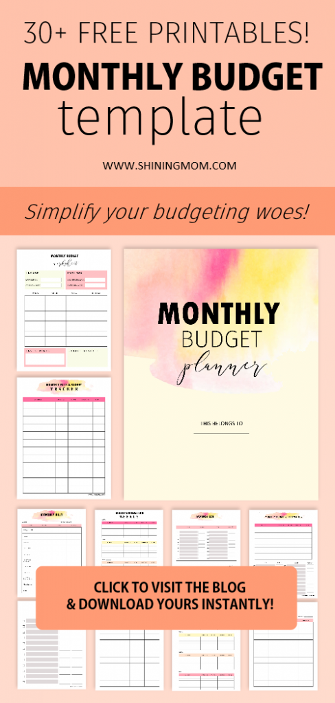 Free monthly budget template binder