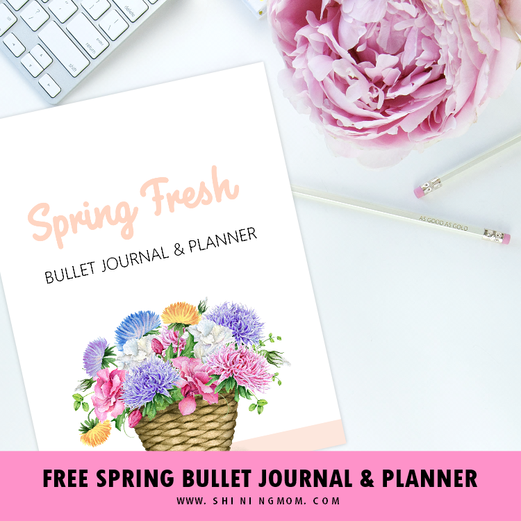 free spring bullet journal layout with goals planner  30