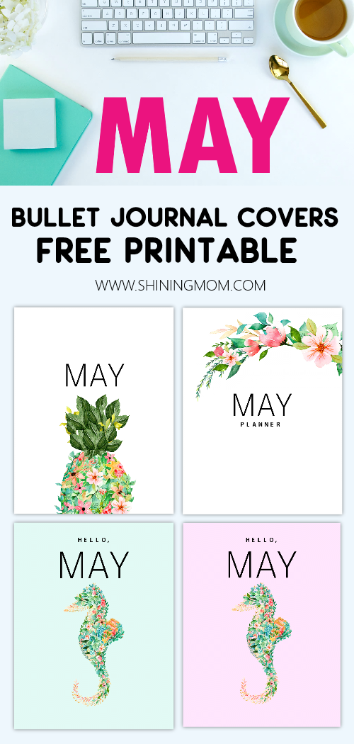 May bullet journal cover and divider
