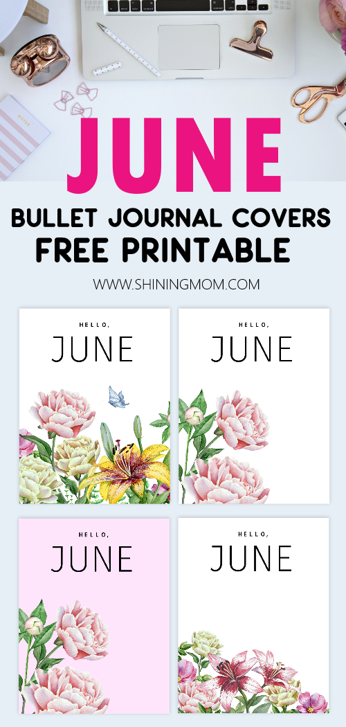 June bullet journal divider