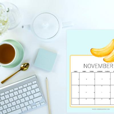 Free Printable November 2019 Calendar: 16 Lovely Styles!