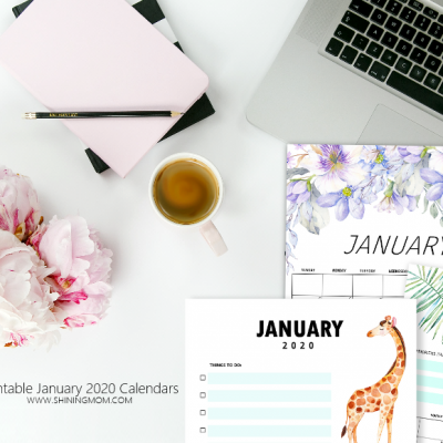 FREE Printable January 2020 Calendar: 12 Awesome Designs to Love!