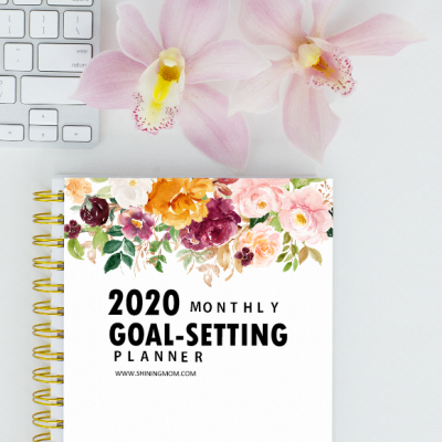 Free Printable 2020 Monthly Goals Planner
