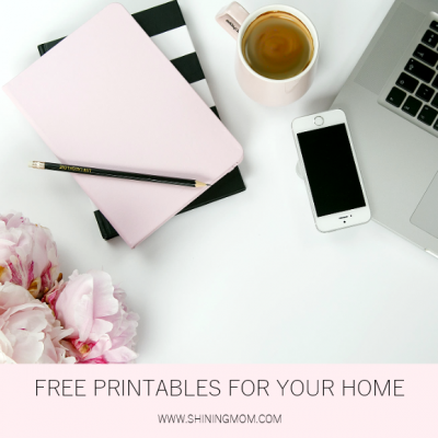 Home Management Binder: 300+ Free Printables to Love!
