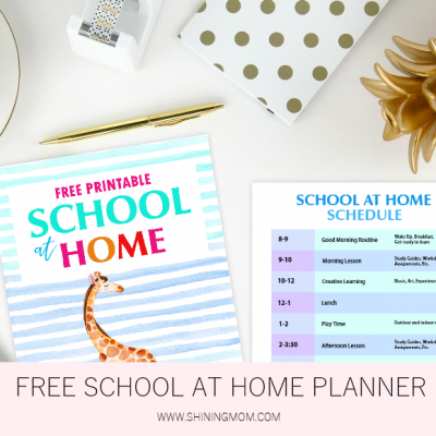Free Printable School at Home Planner: 20 Useful Organizers!