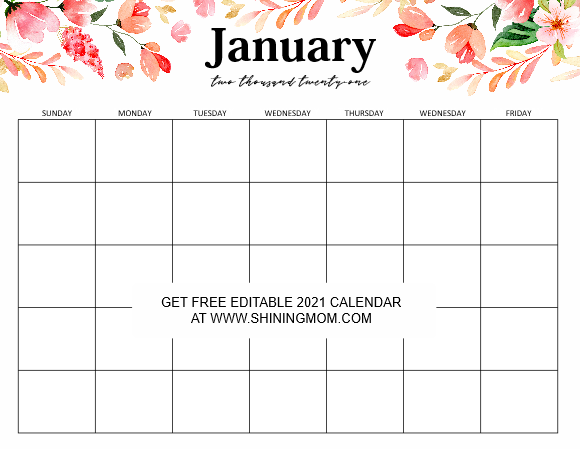 January 2021 Editable Calendar FREE Fully Editable 2021 Calendar Template in Word