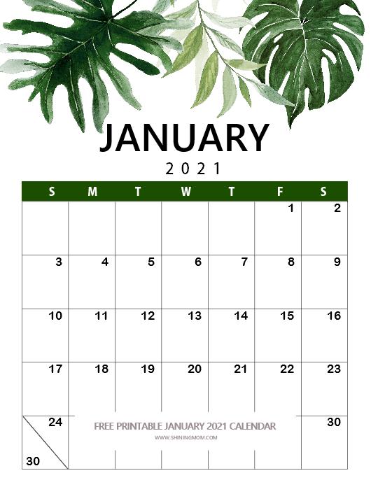 2021 January calendar beautiful nature theme