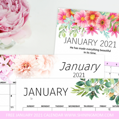 Free Printable January 2021 Calendar: 12 Awesome Designs!