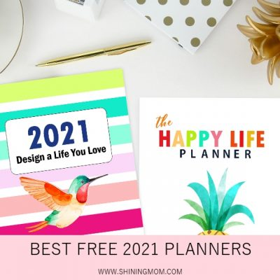 50 Best 2021 Planners in PDF to Print: All Free!